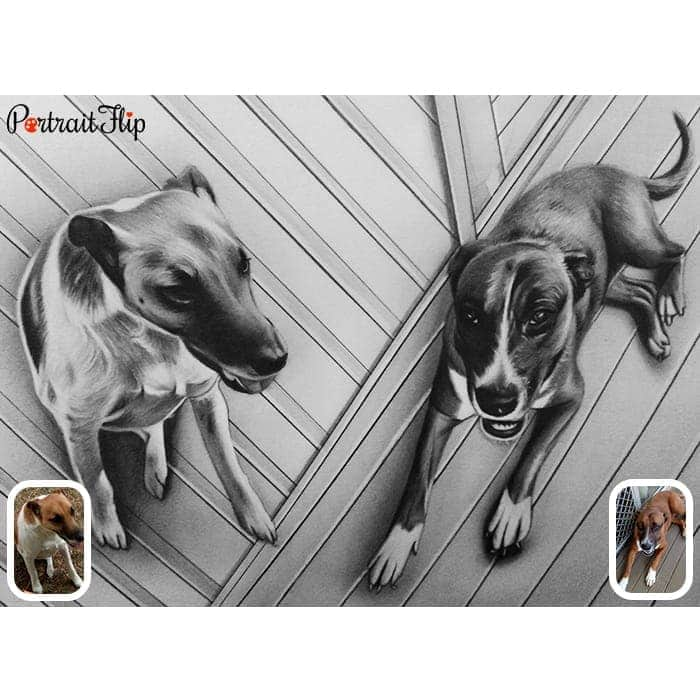 two dogs charcoal painting